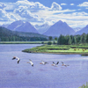 "R. Geoffrey Blackburn""Pelicans Rising"" oil painting index"